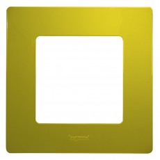 Рамка 1 пост зеленый папоротник