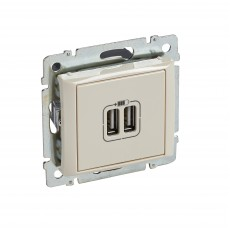 Розетка с 2-мя коннекторами USB, сл.кость